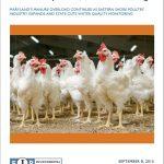 Groups Call for Moratorium on Chicken Houses on Eastern Shore