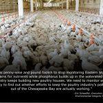 Waterkeepers' Statements on Chicken House Moratorium