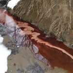 South Riverkeeper: Oil leak at Annapolis Middle may be worse than estimated