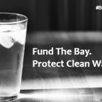 Waterkeepers Denounce the President's Defunding of the Chesapeake Bay Program