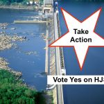 Take Action – A Once in a Lifetime Opportunity to Get the Conowingo Dam Cleanup Right