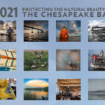 Chesapeake Bay 2021 Calendar
