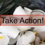 Urge Your Virginia State Senator to Support a Ban on Foam!